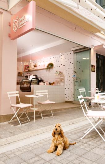 Αυτό είναι το success story του DearDeliDog, του πρώτου ζαχαροπλαστείου ζώων στην Ελλάδα